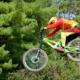 Downhill-Biker (Copyright: Robert Jones via Pixabay)